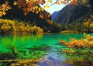 秋天的九寨沟宛如童话仙境