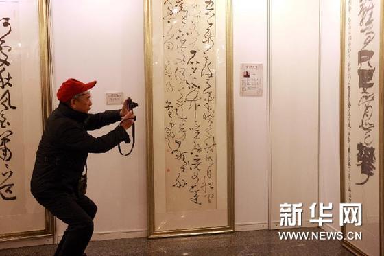12月28日,一名参观者在展览上拍摄展品。新华网图片 王永卓 摄