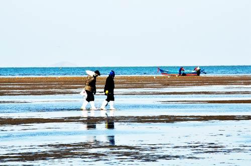 海边人的幸福生活