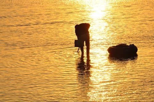 共筑中国梦  互动交流  夕阳最美赶海人 赶海的人,是追着潮落走上大海