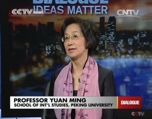 Professor Yuan Ming, School of International Studies, Peking Univ.