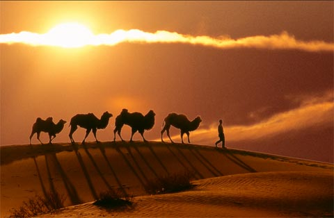 The Silk Road is a series of trade and cultural transmission routes that links the East with the West.
