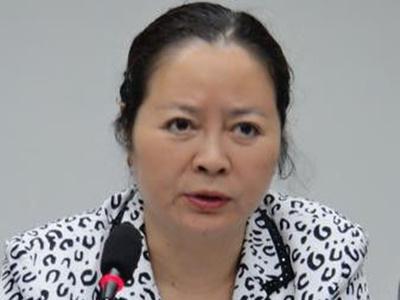 四川红十字会原巡视员文家碧被移送司法机关_