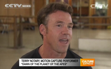 grace a terry notary