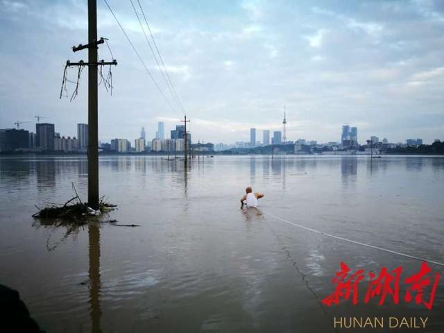 ( 7月3日凌晨4点,邓建明下浏阳河寻找渗水漏洞。)