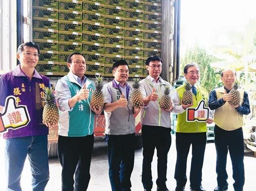 台农委会今天(20日)大动作在台湾屏东县高树乡绿地生产合作社举行凤梨外销破万吨记者会,并且全程直播。