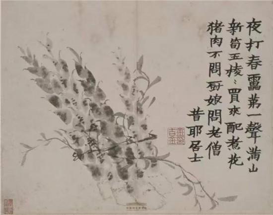 清代·金農,《花卉蔬果冊》之新筍,中國國家博物館藏
