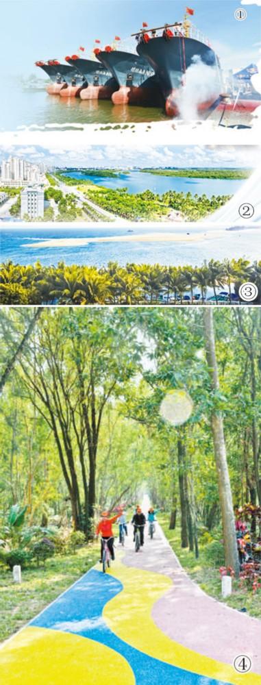 自南洋引种的藤萝雨树依然郁郁葱葱,祖屋也还在,只是进行立面等改造