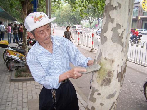"""华寿康在街头铲""""牛皮癣"""""""