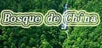 <b><center>Bosque de China</center></b>