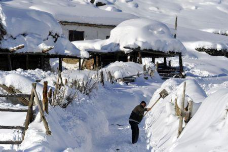A man cleans snow in front of his house in Keketuohai Town of northwest China's Xinjiang Uygur Autonomous Region, Jan. 10, 2010. Keketuohai, the second coldest places in China, witnessed heavy snowfalls on Jan. 6-8, where the lowest temperature was nearly 40 degrees Celsius below zero. (Xinhua/Shen Qiao)