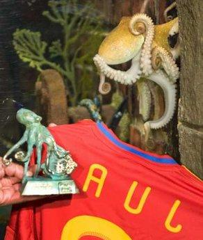 """Paul"", the so-called ""octopus oracle"", is presented with a jersey and a bronze statuette at the Sea Life Aquarium in the western German city of Oberhausen July 22, 2010. The octopus on Thursday was nominated as the ""favourite friend"" of the Spanish town Carballino.REUTERS/Kirsten Neumann"