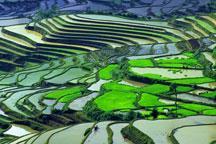 Honghe, Yunnan Province Part 3
