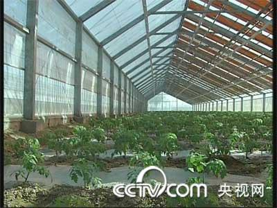 光宝薄膜太阳能农业大棚