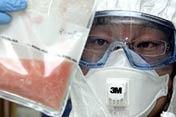 甲型H1N1流感全球蔓延