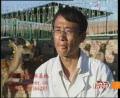 科技苑:80后创业养殖梅花鹿赚来百万家产