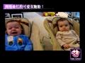 网络最红最萌双胞胎宝宝,可爱到爆!
