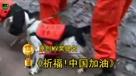 2010爱西柚中国网络视频盛典——原创MV奖