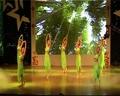 河南农业大学—舞蹈《竹林深处》