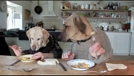 两个狗狗吃饭(笑喷了)