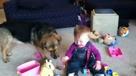 狗狗追泡泡 小宝宝乐疯了