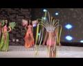 宣布名次前的再次惊艳展示 比基尼小姐中国总决赛现场视频14