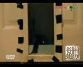 可怜的申博官网穿墙失败~~喵了个咪~