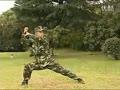 武警新式擒敌拳教学视频