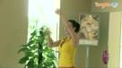 权威瑜伽视频教程