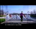 中国书法MV