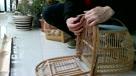 竹鸡打笼 使用方法 视频 鸟笼 斑鸠笼