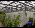 现代农业产业园提升