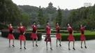 (9)借点情借点爱 动动广场舞慢动作教材视频