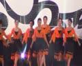 【DV看两岸】中国第十届艺术节晚会《泉水叮咚》