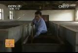 《农广天地》大河乌猪养殖技术