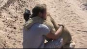 心都融化了!被抛弃的母狮见到抚养自己的饲养员一刻
