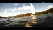 满满正能量!实拍两男子划船救援被困小松鼠