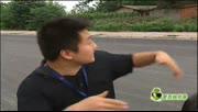 【拍客】实拍街头现愤怒的小鸟专门袭击过往电瓶车