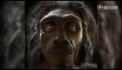 1分钟看完600万年人类进化的自拍