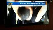 3月29日洛阳电视台新闻联播