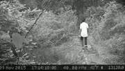男子游丛林遇神秘动物追赶