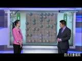 2016年全国象棋团体锦标赛 成都瀛嘉孟辰VS广东碧桂园许国义