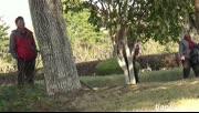 公园惊现狮子,吓得美女拔腿就跑   05