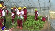 北京教育学院附属大兴实验小学开展农耕课程体验活动