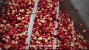Swisse蔓越莓呵护女性健康
