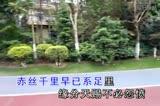 啼笑姻缘(粤剧原唱丽莎)杨文