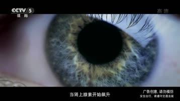 [内地广告](2017)奥迪RS 3 & TT RS(16:9)
