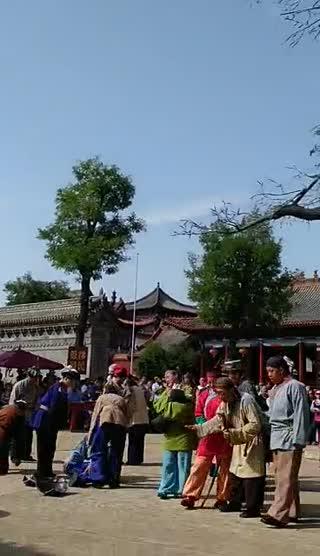 大槐树下(一)苏卓蓉