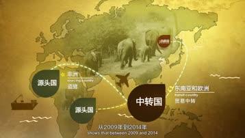 拿什么拯救你非洲象