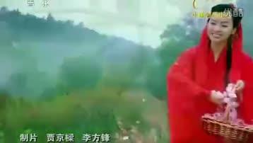 梦入桃花源 陈思思 标清
